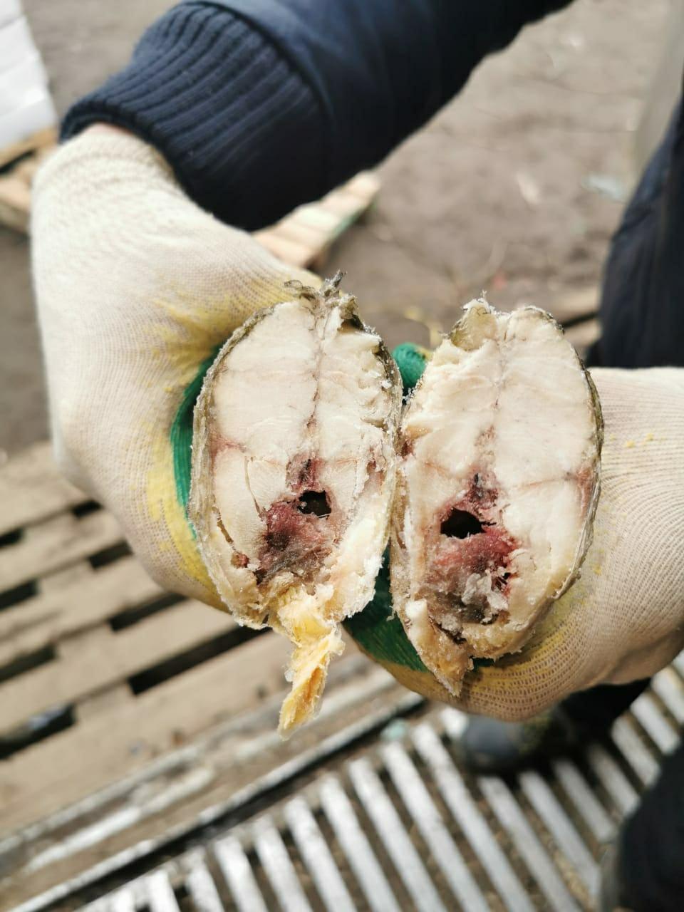 Продам рыбу из цеха, морепродукты, икру в Королеве купить 3