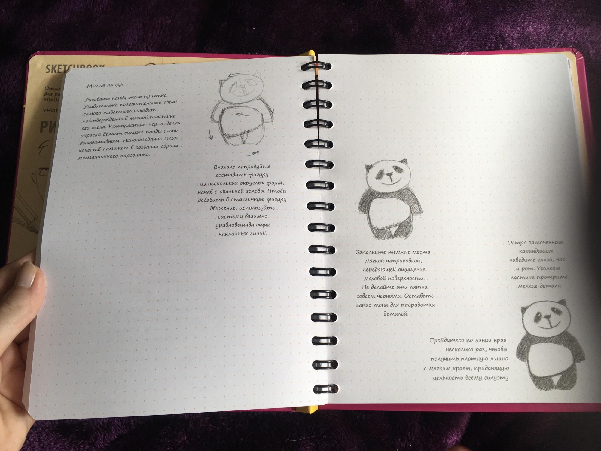 Sketch book базовый в Москве 89775750389 купить 5