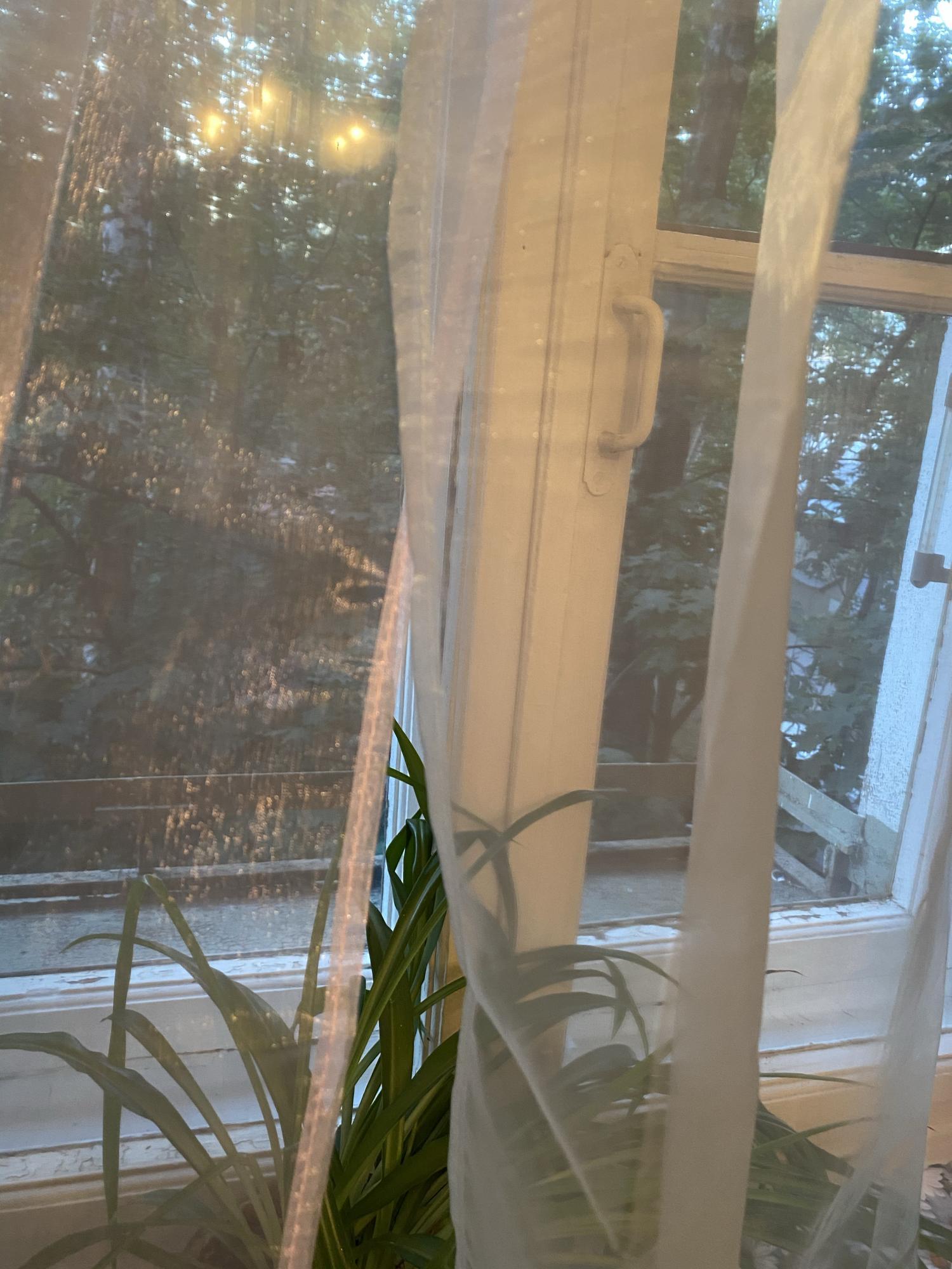 Квартира, 2 комнаты, 45 м² в Москве 89258557885 купить 3